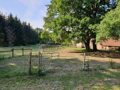 Gite Equestre en Sologne